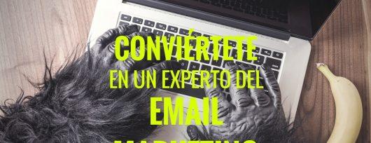 experto email marketing blog 1080